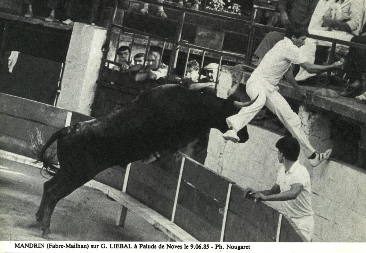 Mandrin F Mailhan G Liebal 09_06_1985