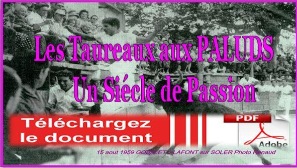 100 ans de passion telcharger le pdf