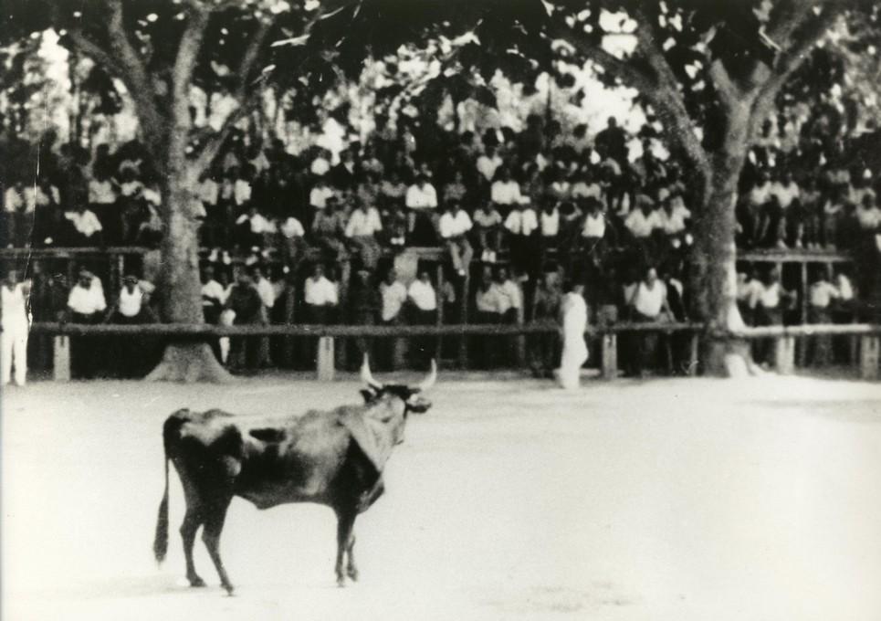 18 arenes 1930 1940