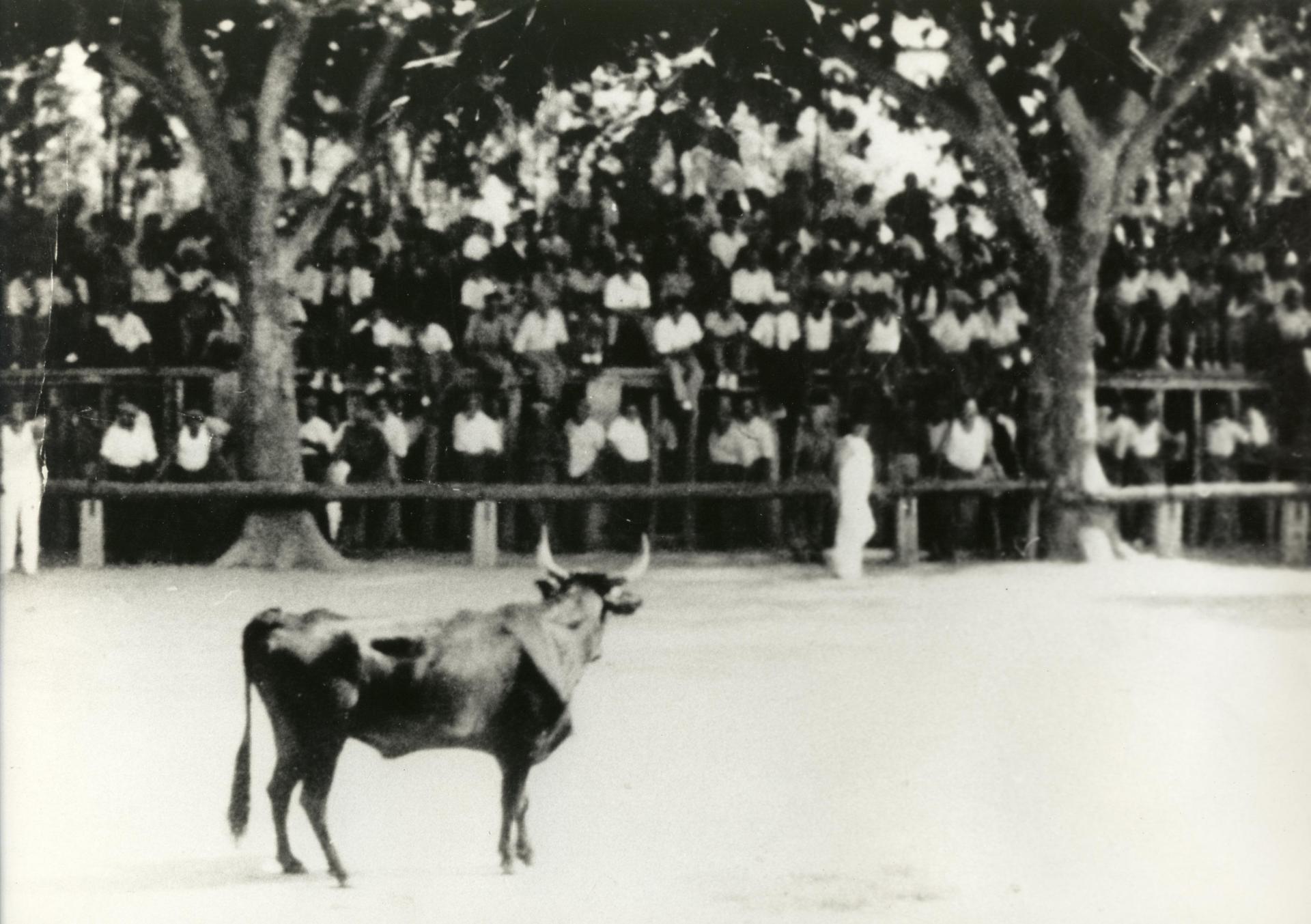 Arenes 1930 1940
