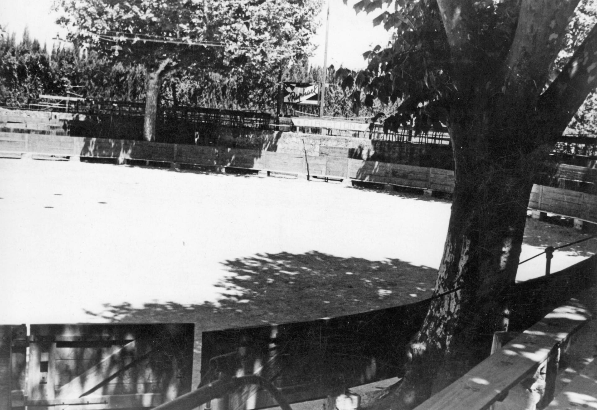 Arenes des paluds en 1966