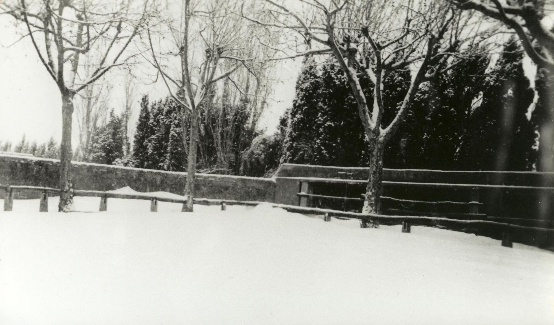 Arenes sous la neige en 1946