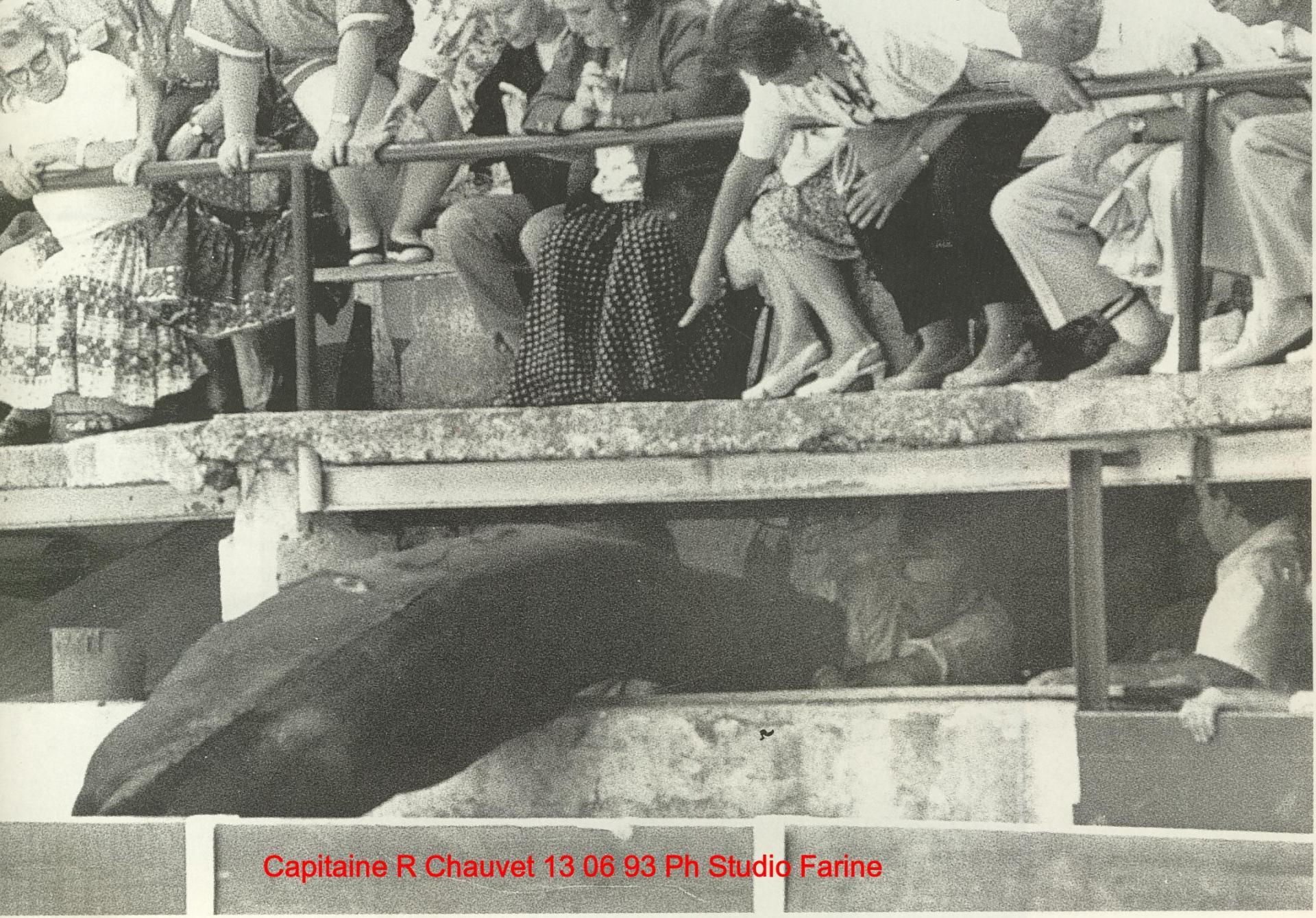 Capitaine r chauvet buvette 13 06 93