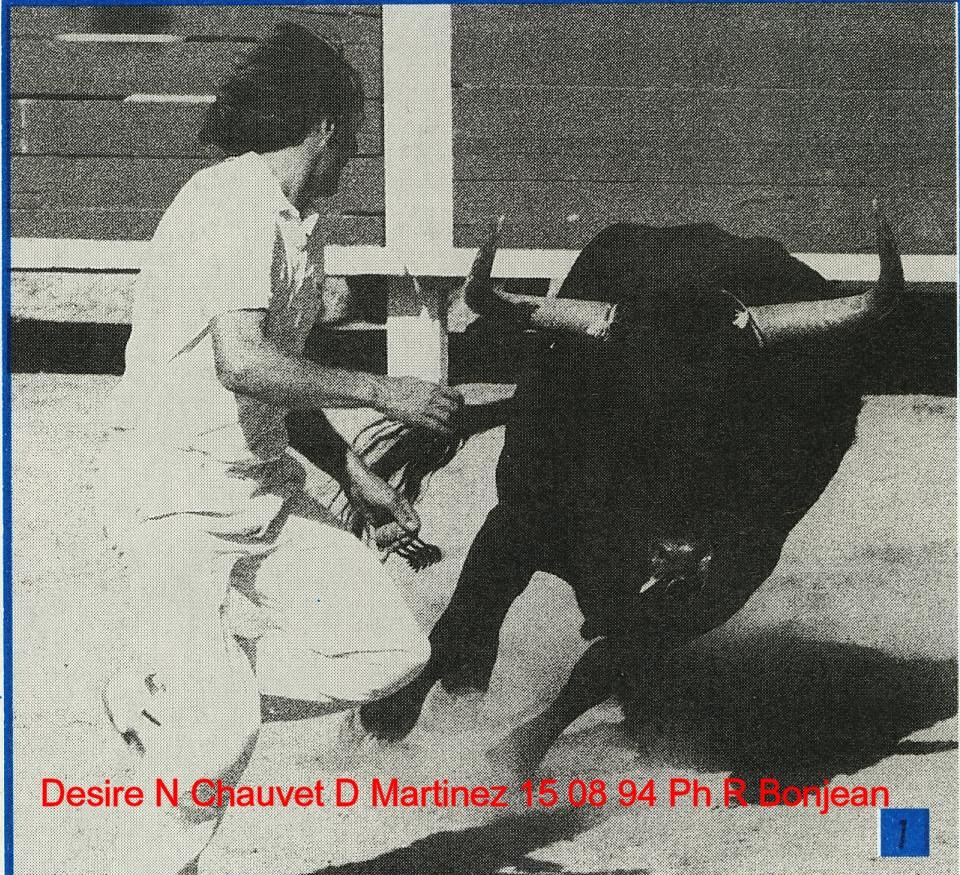 Desire n chauvet d martinez 15 08 1994