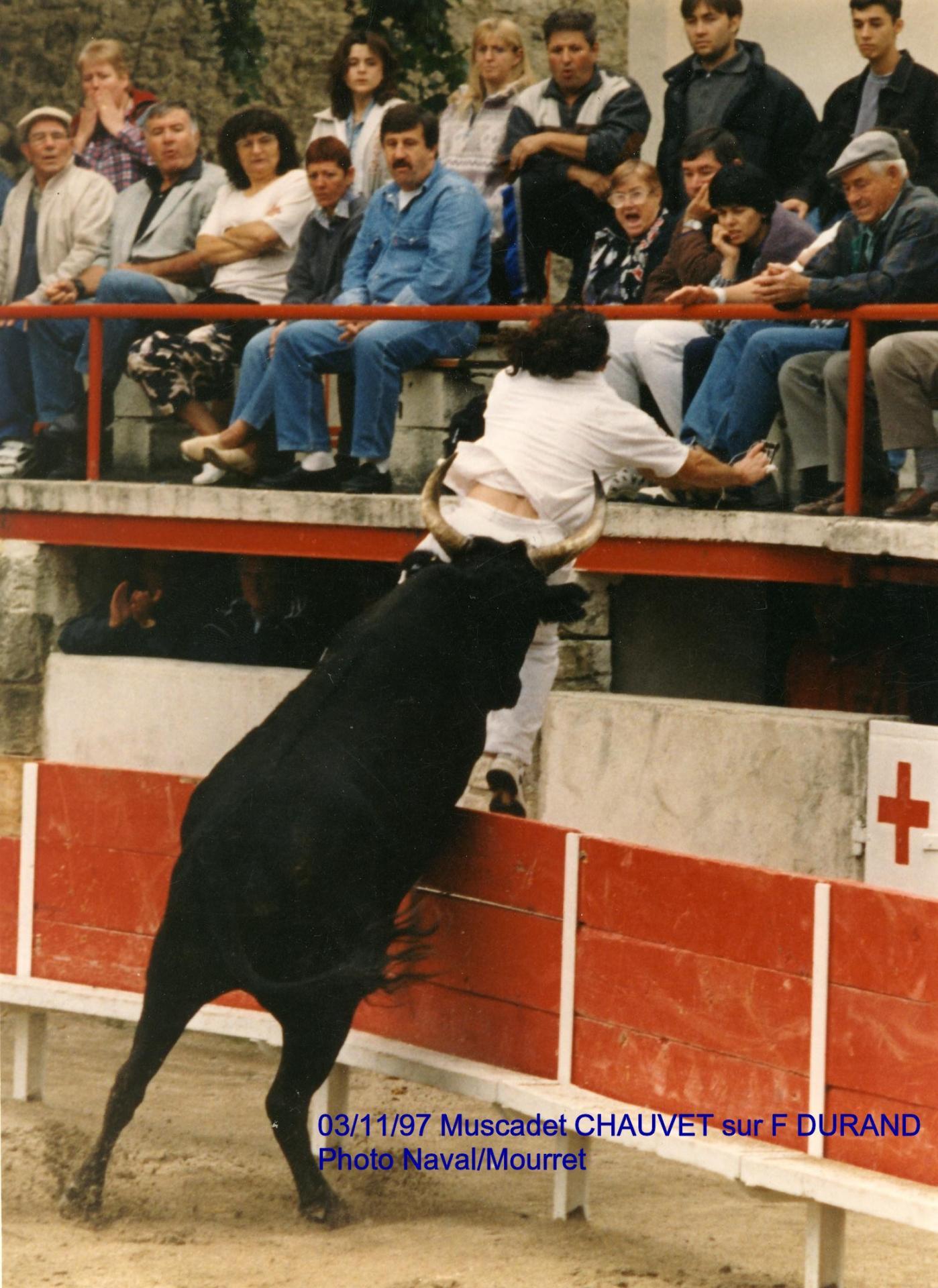 F durand muscadet 1997