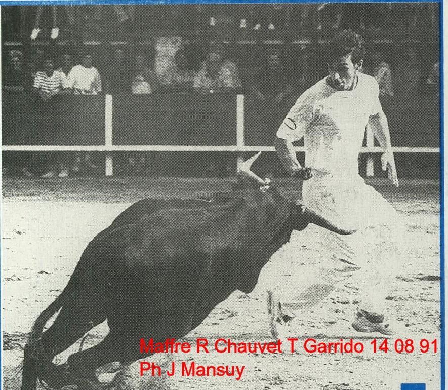 Maffre de r chauvet t garrido 14 08 1994