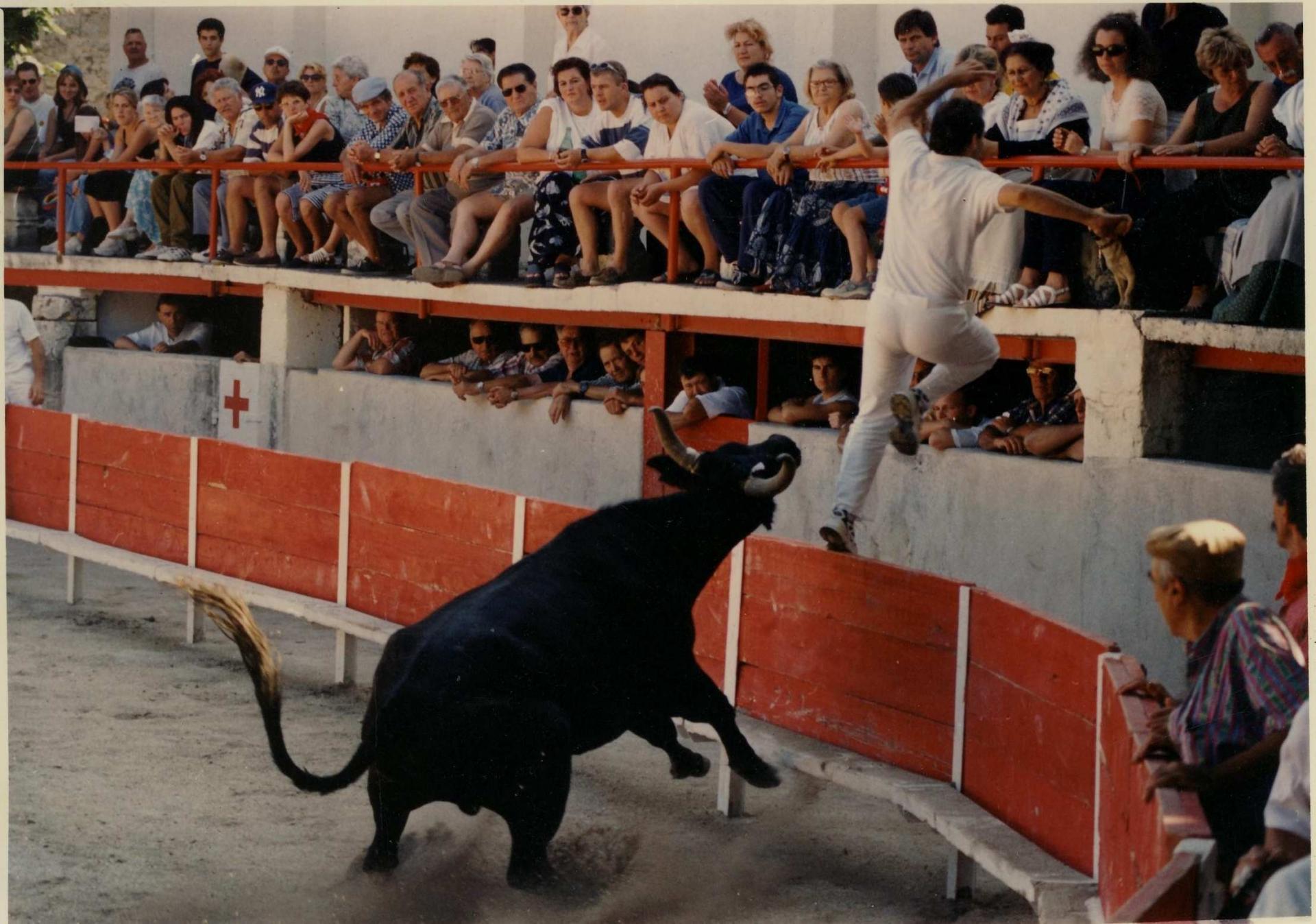 Orgonnais f mailhan p simeon 14 07 1999 ph naval